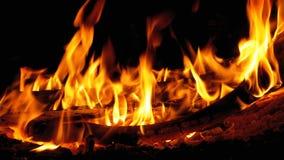 Lägereld i natten Att bränna loggar in orange flammor lager videofilmer