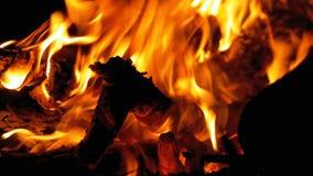 Lägereld i natten Att bränna loggar in orange flammor stock video