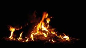 Lägereld i natten Att bränna loggar in orange flammor arkivfilmer