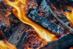 Lägereldträ, orange flammor och rökbakgrund royaltyfria bilder