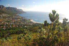 Lägerfjärd som ses från Lyons huvud. Cape Town västra udde, Sydafrika Arkivbilder