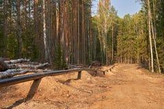 Lägga av ett gasrör i den djupa skogen arkivfoton