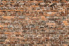 Lägga-gammal vägg av tegelstenar Royaltyfri Bild