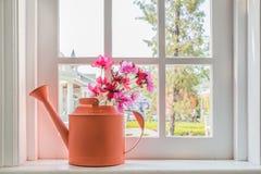 Lägga in med en blomma på fönsterbrädalandshuset arkivfoto