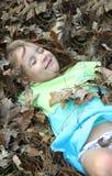 läggande av leaves fotografering för bildbyråer