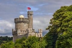 Läggande på Blackrock slott, kork, Irland royaltyfri fotografi
