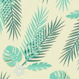 Lägger gröna tropiska sidor för turkos på pastellfärgad gul bakgrund, bästa sikt, framlänges Id?rik botanisk orientering fotografering för bildbyråer
