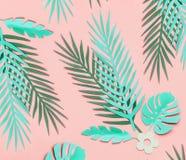 Lägger gröna tropiska sidor för turkos på pastellfärgad rosa bakgrund, bästa sikt, framlänges Id?rik botanisk orientering royaltyfri fotografi