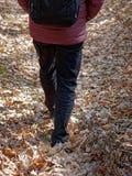 Lägre kroppsdel av mannen som går på skoggolvet som täckas i sidor arkivfoto
