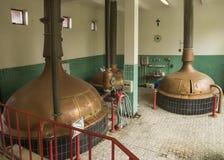 Lägre nivå av brygdhuset på bryggeriet 'Het Sas' i Boezinge, Belg Fotografering för Bildbyråer