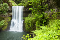 Lägre södra nedgångar silver faller delstatsparken, Oregon, USA Royaltyfria Foton