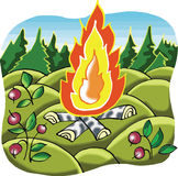 Lägret avfyrar i skog Royaltyfria Foton