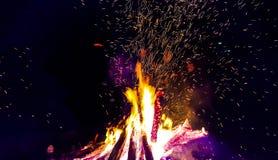 Lägret avfyrar i skog Royaltyfri Bild