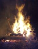 Lägret avfyrar i skog Royaltyfri Fotografi