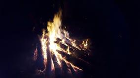Lägret avfyrar i skog Arkivfoton