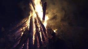 Lägret avfyrar i skog Arkivbild