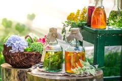 Läka örter i flaskor med örter och alkohol royaltyfri fotografi