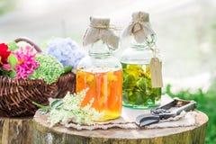 Läka örter i flaskor som naturlig medicin i sommar royaltyfria bilder