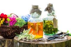Läka örter i flaskor som naturlig medicin i trädgård royaltyfri foto