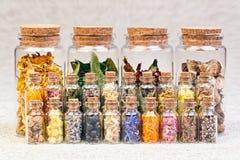 Läka örter och tinktur i flaskor på säckväv, torkad flowe arkivfoton