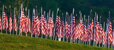 läka för 9 11 fältflaggor Arkivbilder
