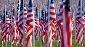 läka för 9 11 fältflaggor Royaltyfria Bilder