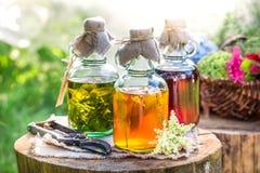 Läka tinktur i flaskor som naturlig medicin Arkivbild
