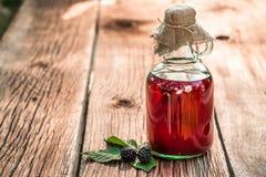 Läka tinktur som naturlig medicin Arkivfoto