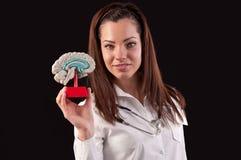 Läkarekvinna som rymmer en modell för mänsklig hjärna mot svart bakgrund Royaltyfri Foto