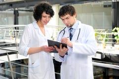 Läkarundersökning Arkivfoto