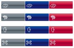 läkarundersökningvektor för 4 symboler stock illustrationer