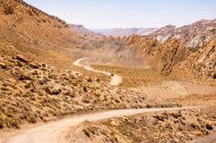 Lämna för bil putsar av damm som kör till och med öknen Arkivbilder