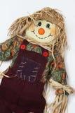 Lämnad Scarecrowbenägenhet Royaltyfri Bild