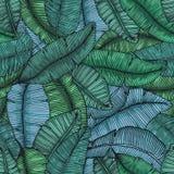 Lämnar den sömlösa handen drog modellen med bananen tropisk textur den botaniska vektorillustrationen Arkivfoto
