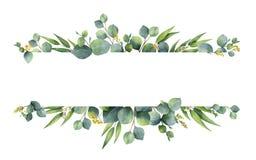 Lämnar det blom- banret för vattenfärgvektorgräsplan med silverdollareukalyptuns och filialer som isoleras på vit bakgrund royaltyfri illustrationer