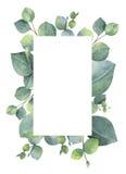 Lämnar det gröna blom- kortet för vattenfärgen med silverdollareukalyptuns och filialer som isoleras på vit bakgrund royaltyfri illustrationer