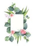 Lämnar det gröna blom- kortet för vattenfärgen med silverdollareukalyptuns och filialer som isoleras på vit bakgrund stock illustrationer