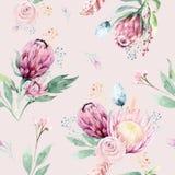 Lämnar förgrena sig blommar den blom- modellen för handteckningsvattenfärgen med protearosen, och Bohemiska sömlösa guld- rosa fä stock illustrationer