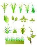 Lämnar och gräs vektor illustrationer