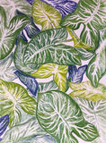 Lämnar stor gräsplan för teckningsillustrationen den blom- prydnaden vid pastellfärgade blyertspennor arkivfoton