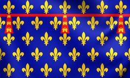 Län av den Artois flaggan royaltyfri illustrationer