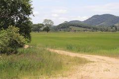 Ländlich idyllisch Ansicht - Santa Catarina Lizenzfreie Stockbilder