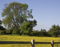Ländlich idyllisch Landschaft stockfotografie