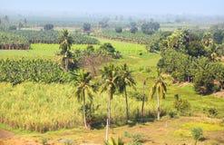 Ländliche Ackerlande in Indien Lizenzfreie Stockbilder