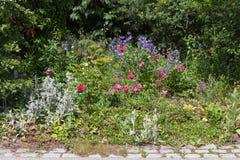 ländliche Blumen im Häuschengarten lizenzfreie stockfotografie