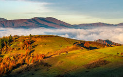 Ländliche Felder über den Wolken in den Bergen bei Sonnenaufgang Lizenzfreie Stockfotos