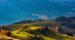 Ländliche Felder auf Hügeln am schönen Abend beleuchten Lizenzfreie Stockbilder