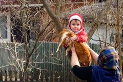 Ländliche Großmutter gibt in die Hände einer Katze ein Kind, das einen Baum kletterte lizenzfreie stockbilder