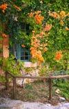 Ländliche Hausfassade abgedeckt mit Blumen Stockfotos