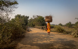 Ländliche indische Frau trägt Holz auf ihrem Kopf für das Brennen zu ihrem Dorf in Bankura Lizenzfreies Stockbild